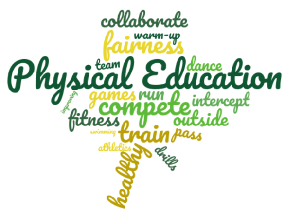 Our pupil rationale for Physical Education