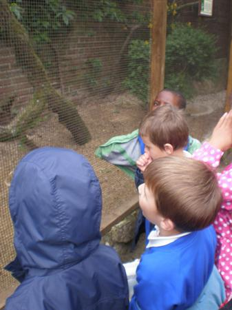 Cotswold Wildlife Park School Trip