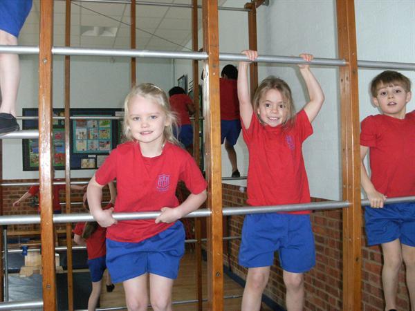 Climbing on the wall bars in PE!