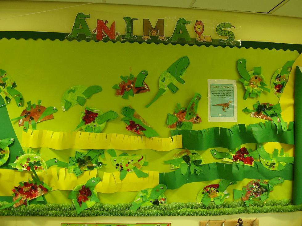 Our animal display