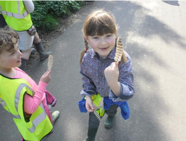 Spring Welly Walk - Sunshine and Mud!