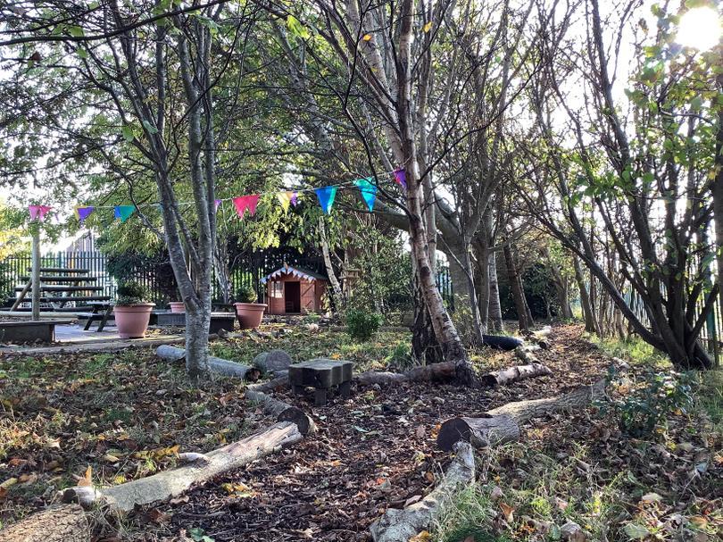 The lovely woodland area of the Nursery garden