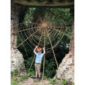 Trapped in a prehistoric spider's web