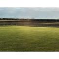 School field in the sunshine