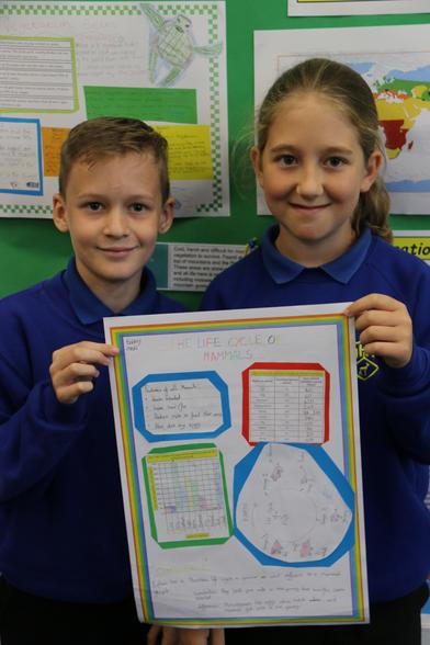 In Science this week, we have been learning about life cycles
