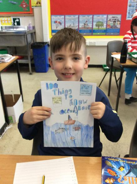 For World Book Day we designed the front covers of our own fact books.