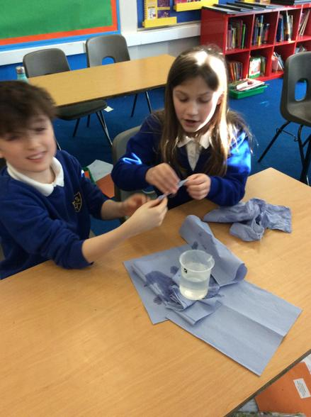 In science this week, we investigated the effects of water resistance on moving objects.