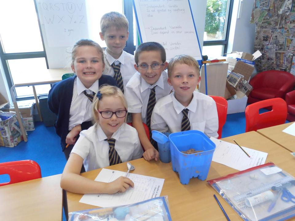 We investigated soluble and insoluble materials in science.