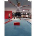 Gymnastics Day 2017