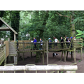 Walking over the goat enclosure