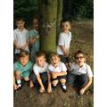 Making tree boggart creatures!