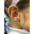 Who's ear is this?