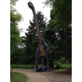 How tall are dinosaurs?