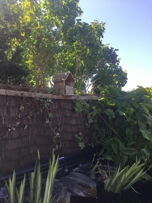 Joe built a bird box for the birds in his garden