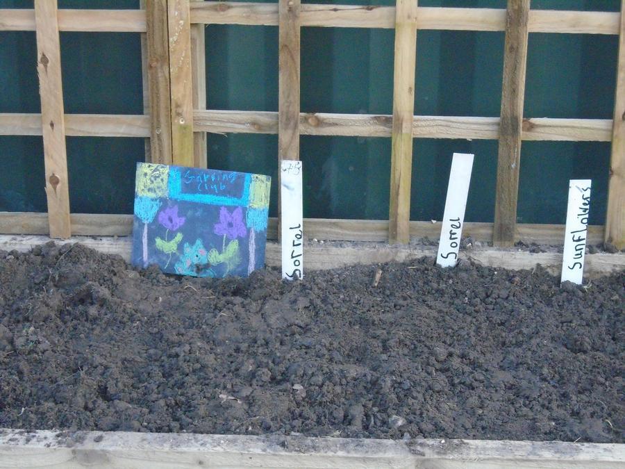 Good job gardening club!