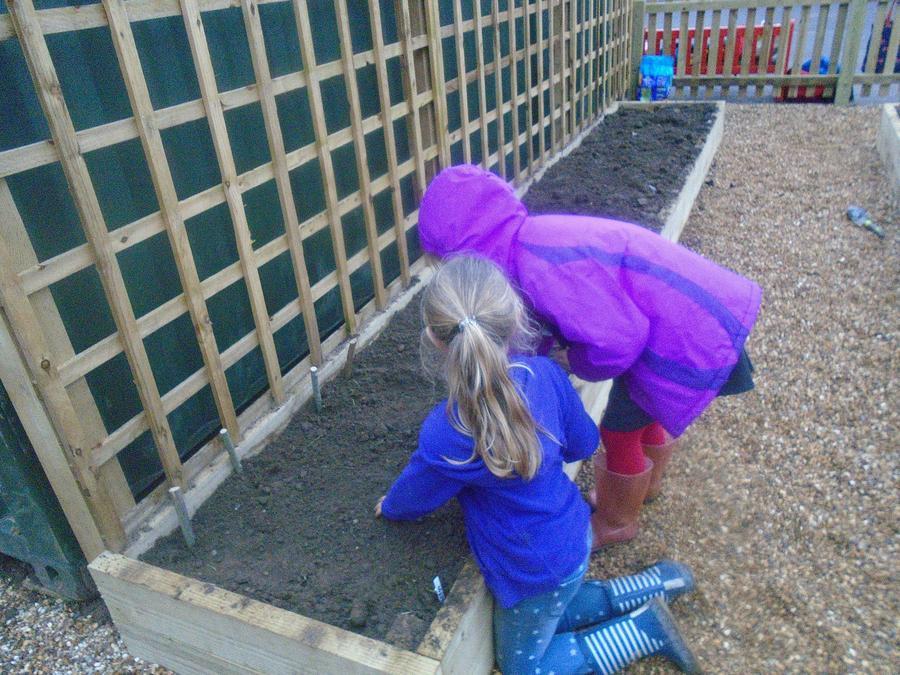 Great team work planting seeds
