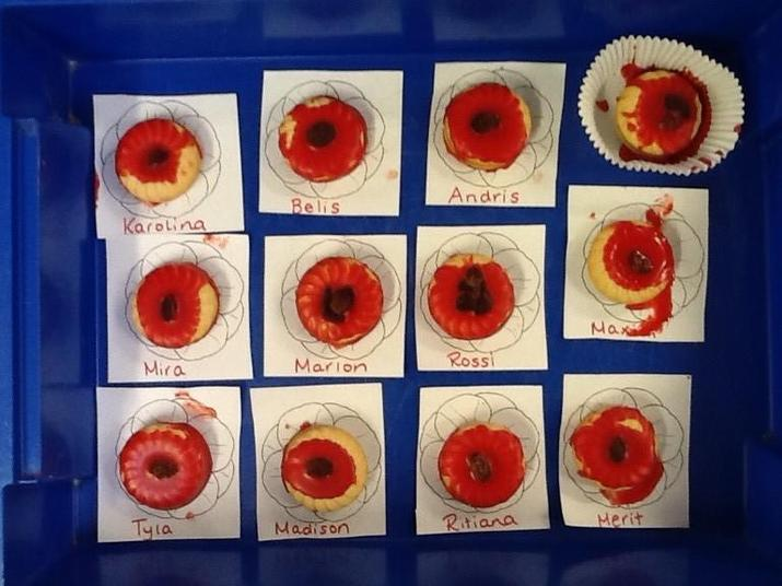 Decorated Poppy Biscuits
