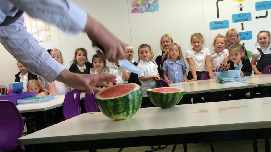 ...the water melon is history!