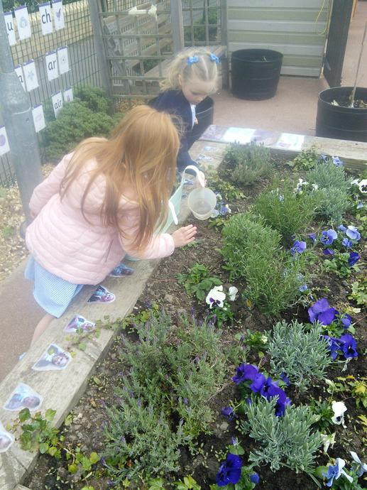 Looking after our flowers!