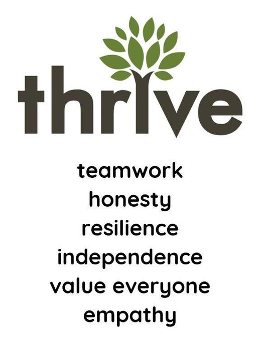 thrive core values