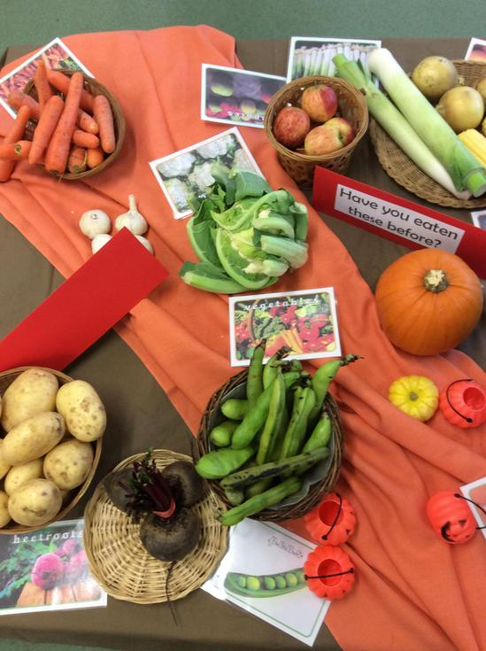 Exploring Vegetables