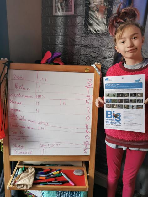 Erin has used her tally chart knowledge to join in the Big Garden Birdwatch