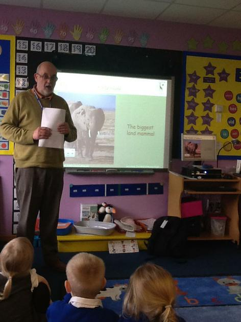 Learning about wildlife in Kenya.