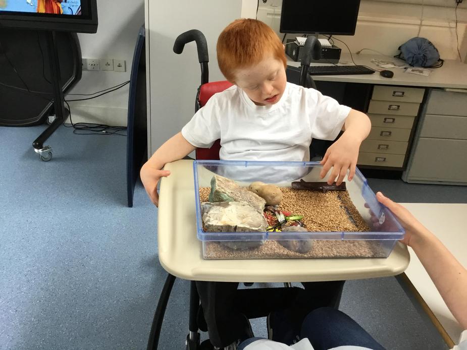 exploring sensory trays