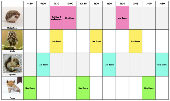 Live Zoom Timetable