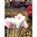 We enjoyed toasted marshmallows