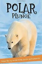 Polar Lunge