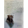 Year 6 Writing