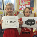 Learning colours in Italian.