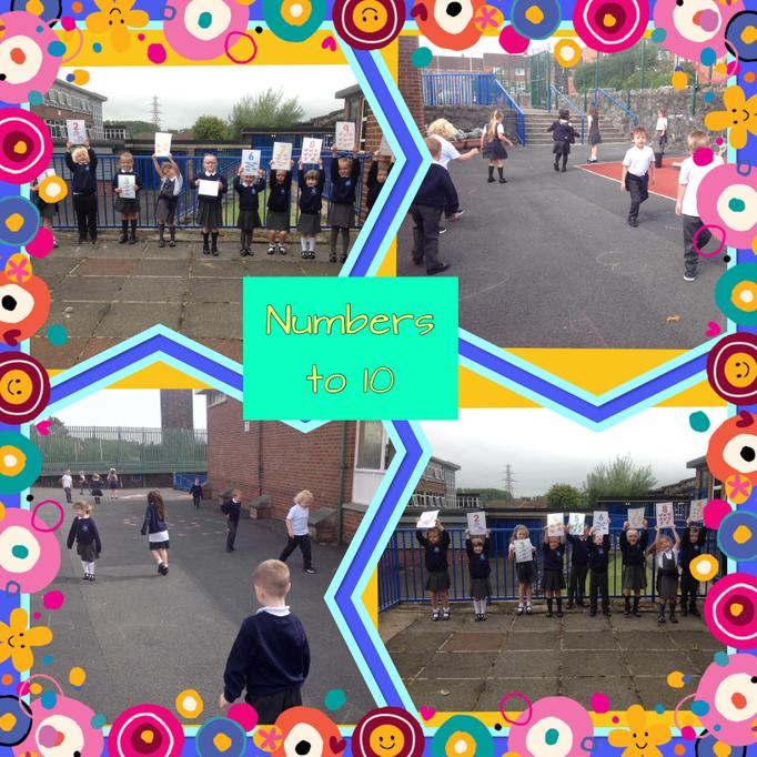 We found numbers up to 10 and ordered numbers up to 10