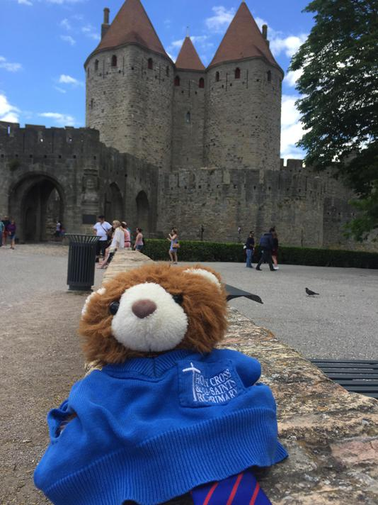 Our school bear, Barnaby exploring the sights of Carcassonne.