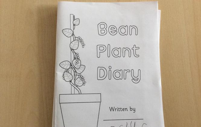We have started our bean diaries.