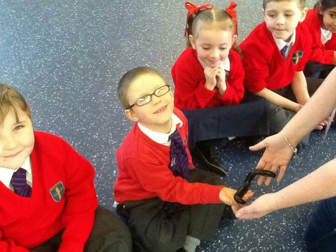 The millipede's little legs tickled Ethan's hand.