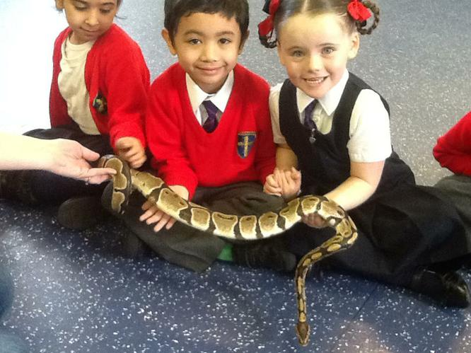 Hakeem and Pearl were very brave holding the snake