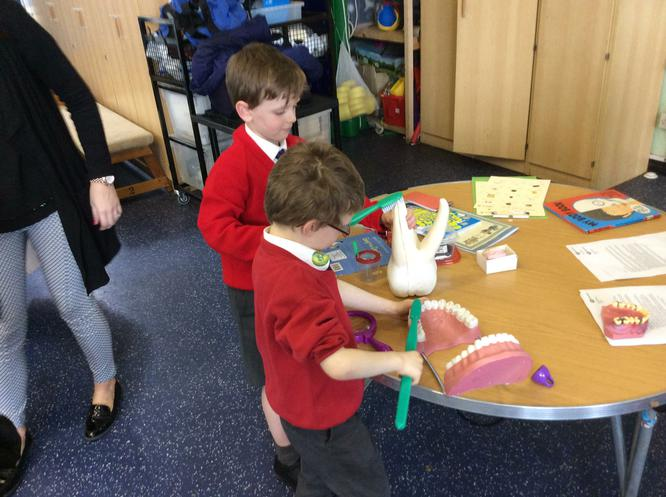 We had a go at cleaning teeth!