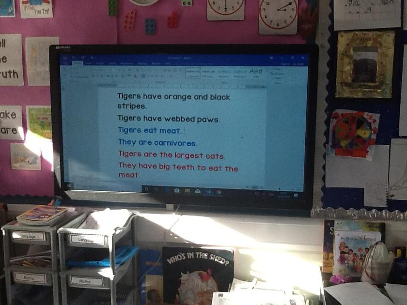 Some of our facts about Tigers.