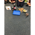 We bought items for our experiment