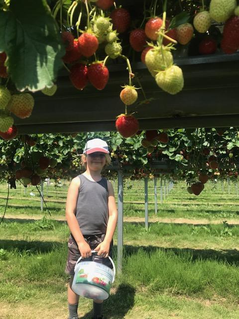 Alex at the fruit farm