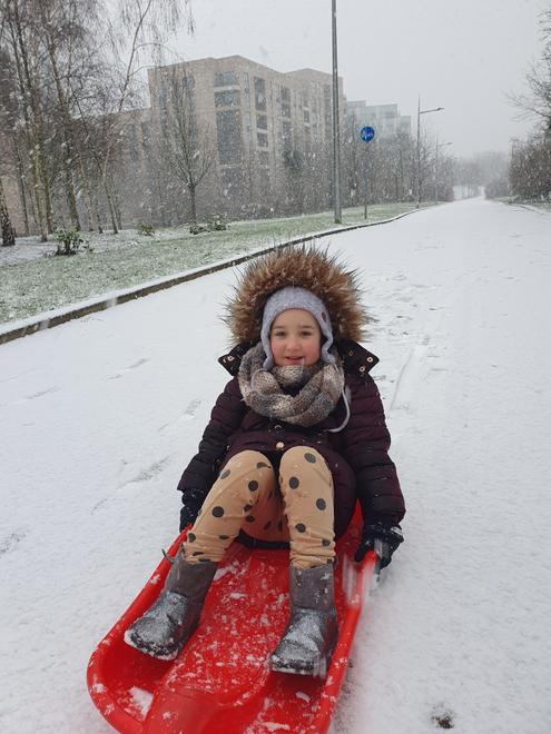 Goda enjoying her snow day