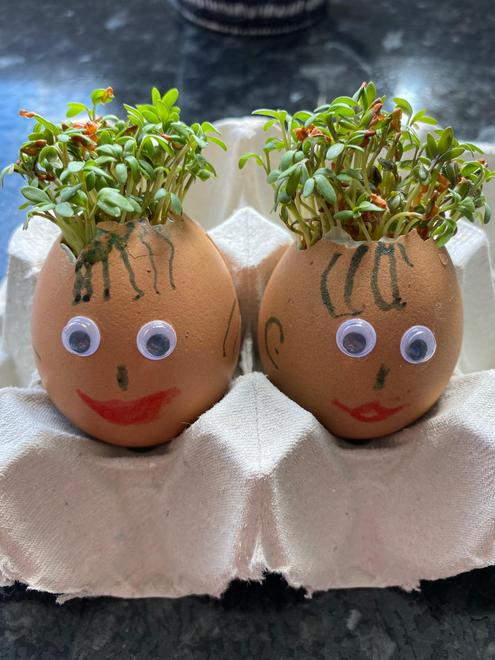 Charlotte and Chloe's Cress Heads