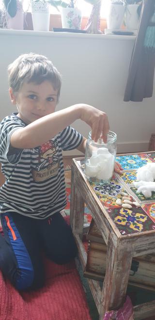 Maksim planting his beans