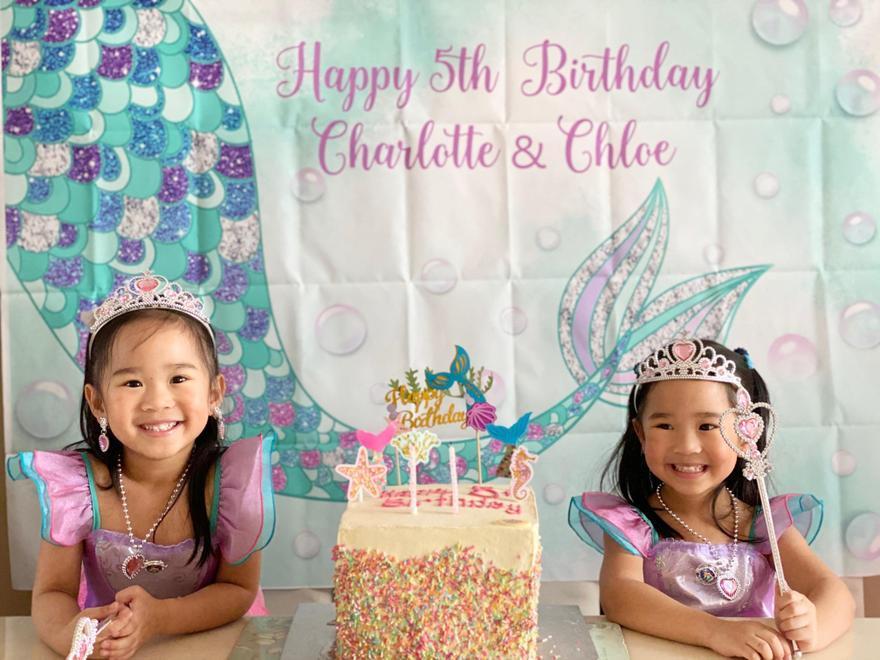 Chloe and Charlotte's birthday banner
