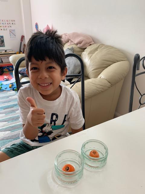 Mateo B's carrot tops