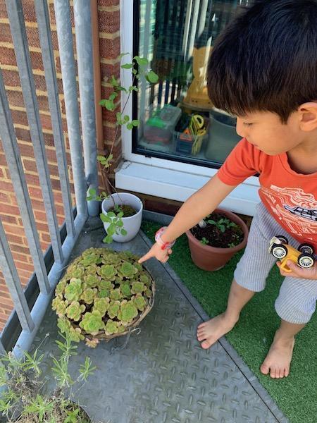 Mateo B finding patterns outside
