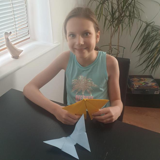 Nina's origami butterflies