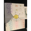 Roxie's Science work - excellent mindmap!